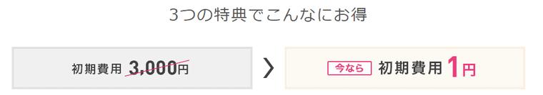 IIJmio初期費用1円